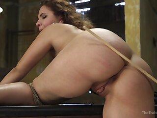 Capable rope bondage keeps Callie Klein alongside place via BDSM bonking